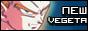 New Vegeta